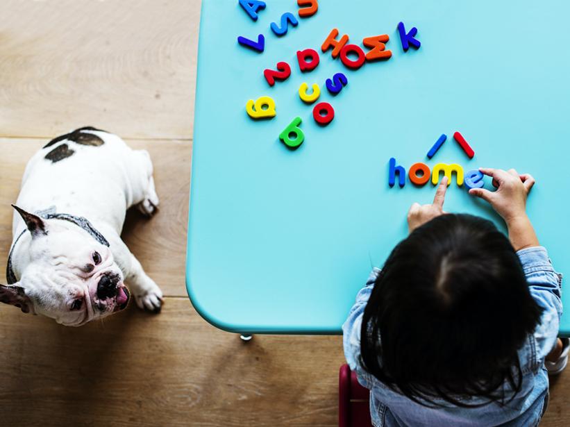 Animali domestici e bambini: regole per una corretta convivenza
